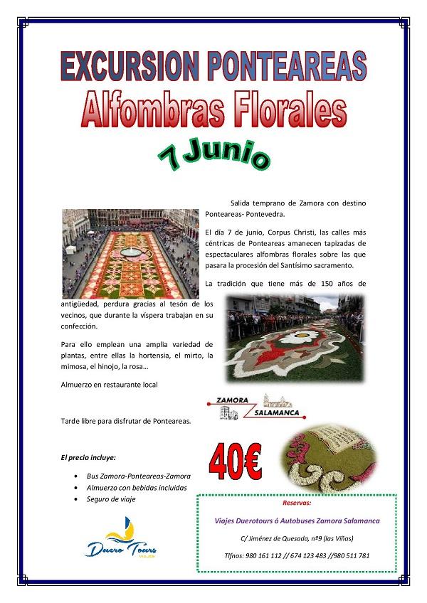 Ponteareas 7 junio